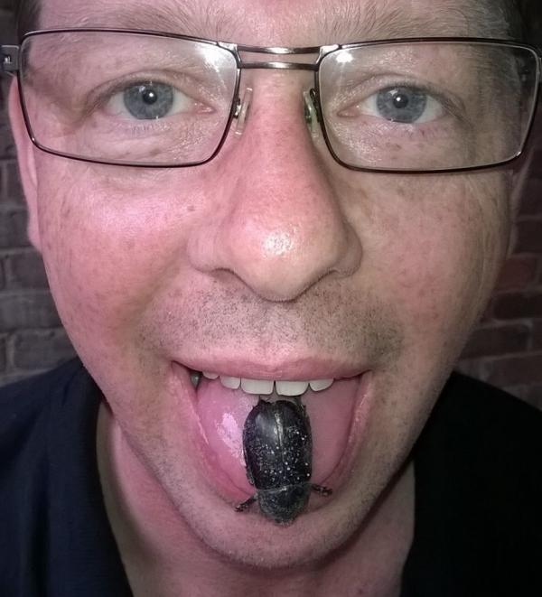 andrew-bug