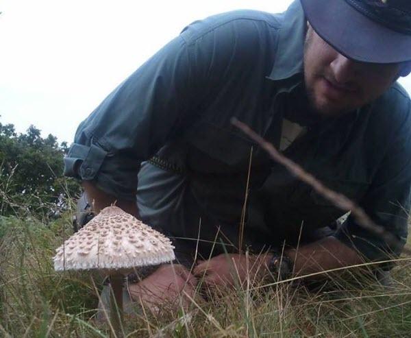 castaway_fungi